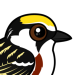 Birdorable Chestnut-sided Warbler