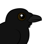 Birdorable Common Raven