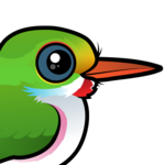 Birdorable Cuban Tody