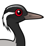 Birdorable Demoiselle Crane