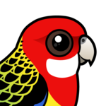 Birdorable Eastern Rosella