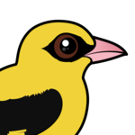 Birdorable Eurasian Golden Oriole