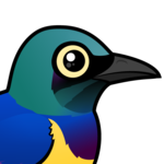 Birdorable Golden-breasted Starling