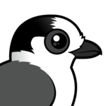Birdorable Gray Jay