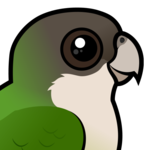 Birdorable Grey-hooded Parakeet