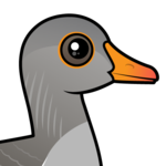 Birdorable Greylag Goose