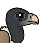 Birdorable Indian Vulture