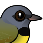 Birdorable Mourning Warbler