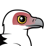 Birdorable Palm-nut Vulture
