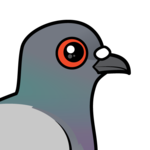 Birdorable Rock Pigeon