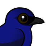 Birdorable Purple Martin