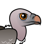 Birdorable Rueppell's Vulture