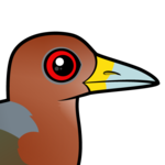 Birdorable Rufous-necked Wood-Rail