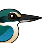 Birdorable Sacred Kingfisher