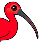 Birdorable Scarlet Ibis