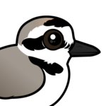 Birdorable Snowy Plover