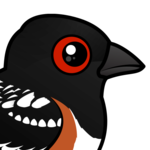 Birdorable Spotted Towhee