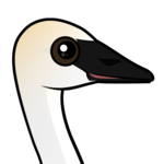 Birdorable Trumpeter Swan