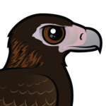 Birdorable Wedge-tailed Eagle