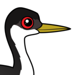 Birdorable Western Grebe
