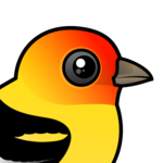 Birdorable Western Tanager