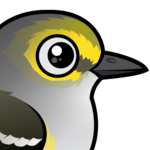 Birdorable White-eyed Vireo