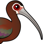Birdorable White-faced Ibis