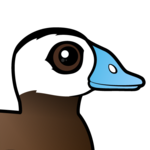 Birdorable White-headed Duck