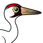 Birdorable Whooping Crane