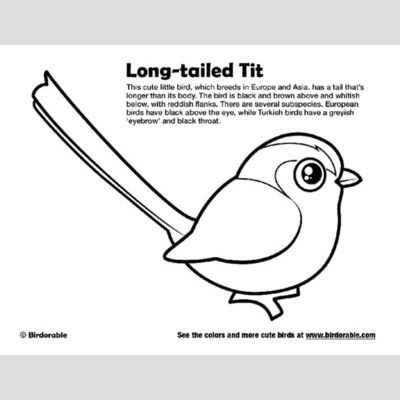 Long-tailed Tit Coloring Page sample