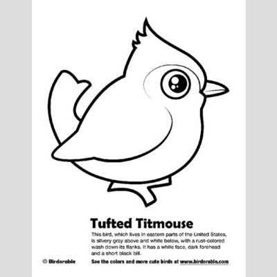 Tufted Titmouse Coloring Page sample
