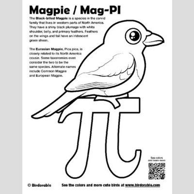 Mag-PI Coloring Page with Birdorable Magpie sample