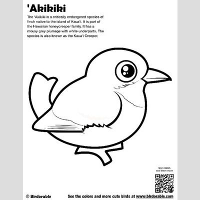 'Akikiki Coloring Page sample