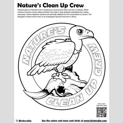 Nature's Clean Up Crew Coloring Page sample
