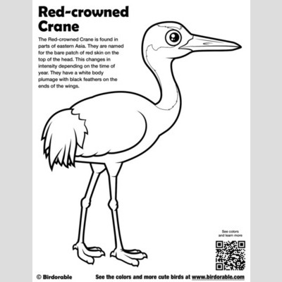 Red-crowned Crane Coloring Page sample