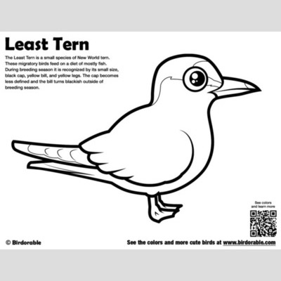 Bird migration coloring pages ~ Cute Bird Coloring Pages by Birdorable - Free Downloads