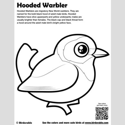 Hooded Warbler Coloring Page sample