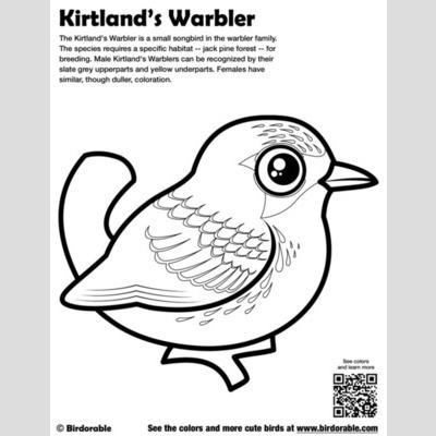 Kirtlands Warbler Coloring Page