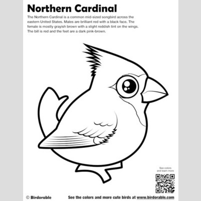 Northern Cardinal Coloring Page sample