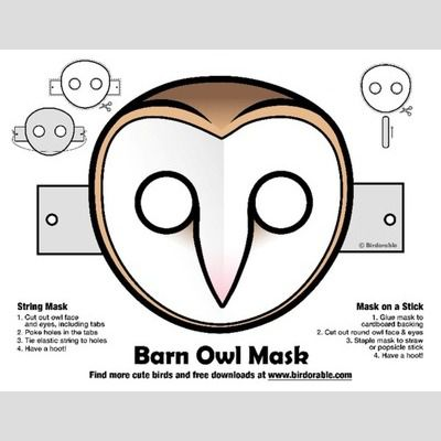 Halloween Barn Owl Mask sample