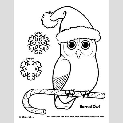 Christmas Barred Owl Coloring Page sample