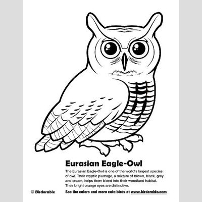 Eurasian Eagle-Owl Coloring Page sample