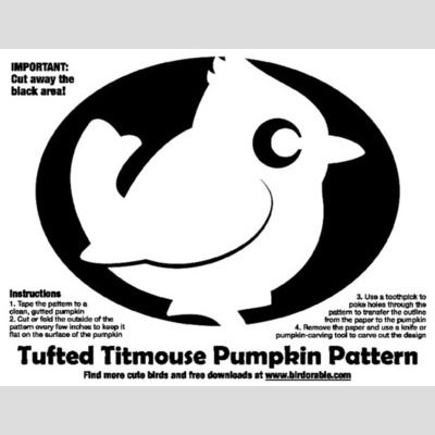Tufted Titmouse Pumpkin Pattern sample