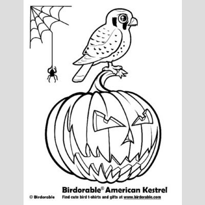 Halloween American Kestrel Coloring Page sample