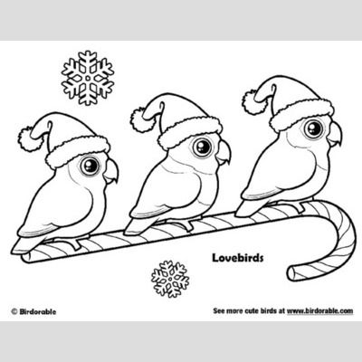 Santa Lovebirds Christmas Coloring Page sample