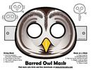 Halloween Barred Owl Mask