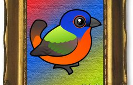 Painting of a Painted Bunting