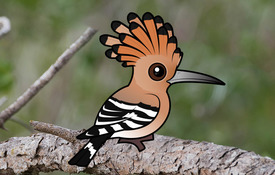 The Birdorable Hoopoe