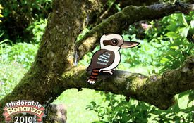 Bonanza Bird #5: The Laughing Kookaburra