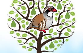 12 Days of Birdorable: a Partridge in a Pear Tree